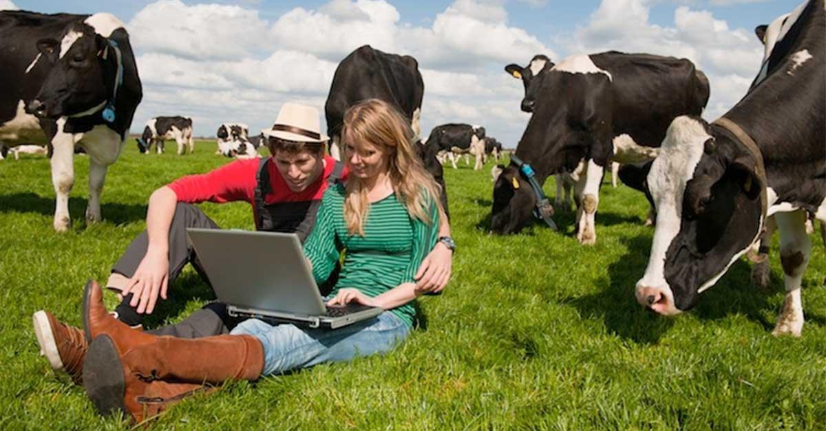 Corso di Marketing per il settore Agroalimentare
